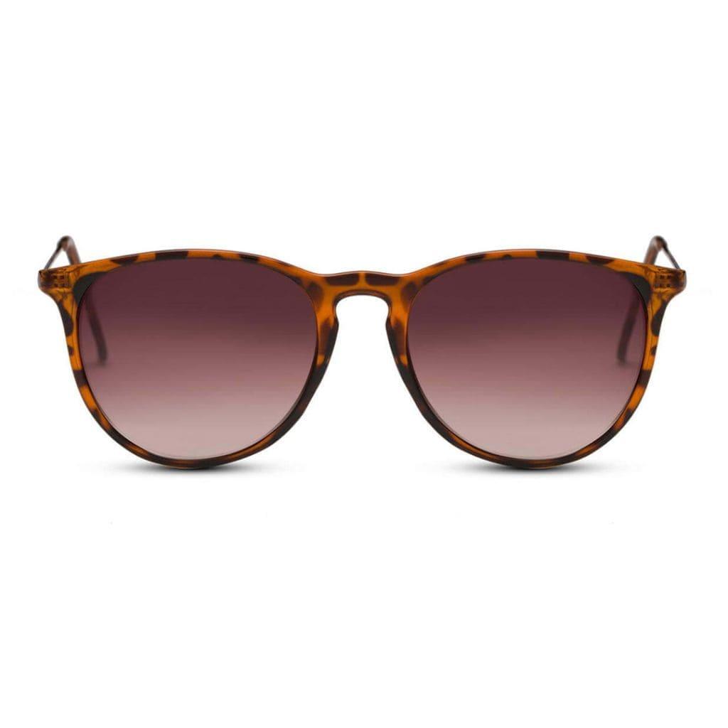 γυαλιά ηλίου ταρταρούγα, στρογγυλά γυναικεία γυαλιά ηλίου - αντρικά γυαλιά ηλίου με καφέ φακό, passion-black rose sunglasses
